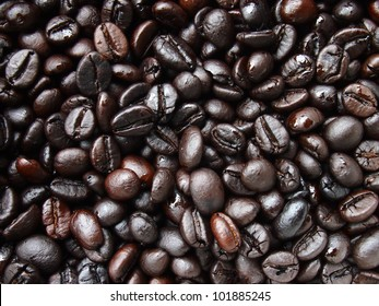 Coffee beans robusta roasted background.