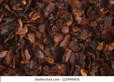 Coffee cherry tea made from the dried skins of dried berries of the coffee plant (cascara), for backgrounds or textures