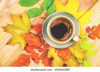 Coffee cup and autumn leaves over wood background toned photo.