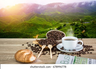Coffee cup with coffee beans on the wooden table and the plantations in natural