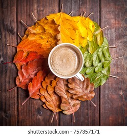 Coffee cup on the autumn leaves and old wooden table background. Top view with copy space