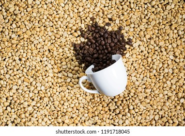 Coffee cup on a background of coffee beans.Background coffee beans have not been processed.