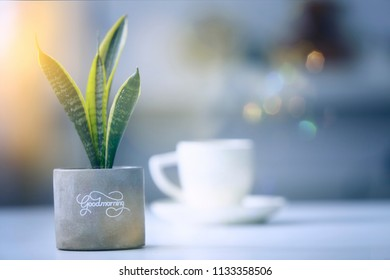 coffee cup on the table ,morning scene at home