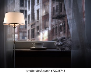 Coffee Cup on the window. On the windowsill is a cat. The light from the lamp. Rain drops on glass. Outside the city