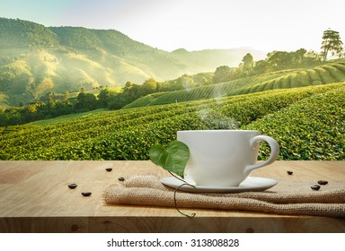 Coffee cup with Robusta coffee beans on the wooden table and the Plantations background