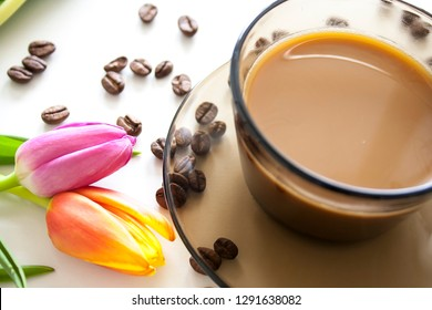 Coffee cup and tulips on white background. Spring flowers and coffee beans.