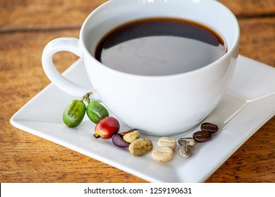 Coffee cups with all stage of coffee beans