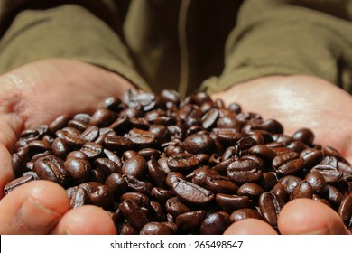 Coffee Farmer Showing Coffee Beans