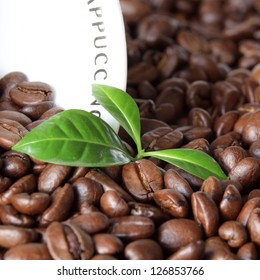 Coffee grains and green leaf with cup