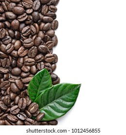 coffee grains and leaves border