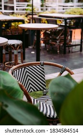 Coffee shop with ratan chairs and green plants