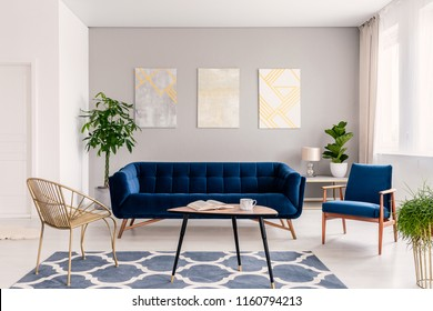 Coffee table with open book and tea mug standing on carpet in real photo of bright sitting room interior with fresh plants, gold chair and navy blue lounge