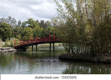 Coffs Harbour Australia, view of a Japanese garden