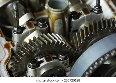 Cog of Gear Wheel