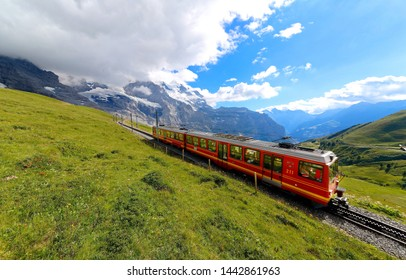 A cog wheel train travels on famous Jungfrau Railway from Kleine Scheidegg to Jungfraujoch station ( top of Europe ) on the green grassy hillside, in Berner Oberland ( Bernese Highlands ), Switzerland