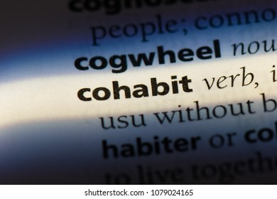 cohabit word in a dictionary. cohabit concept