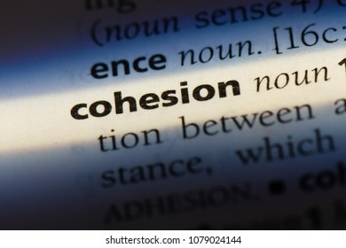 cohesion word in a dictionary. cohesion concept