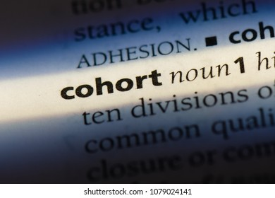 cohort word in a dictionary. cohort concept