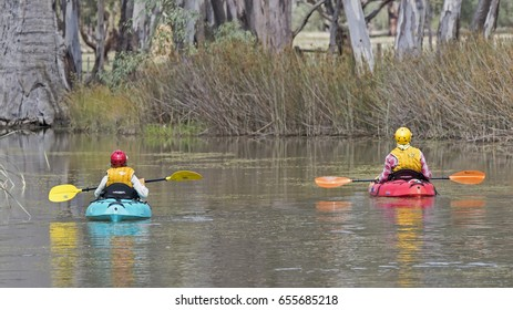 COHUNA, VICTORIA, AUSTRALIA - MARCH 22, 2017:  Increasingly man-powered water recreation such as these paddlers can been seen on the backwaters around Gunbower Island.