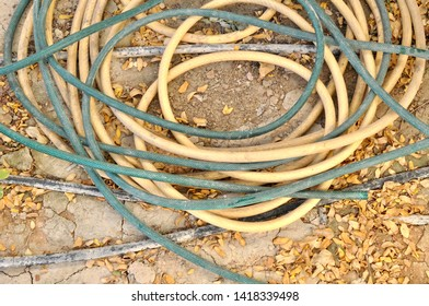 Coiled old hosepipes on ground