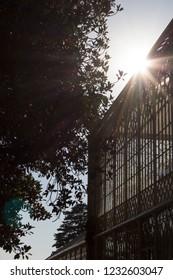 Coimbra/Portugal - 08/15/2018:   Botanical Yard at University of Coimbra, Portugal