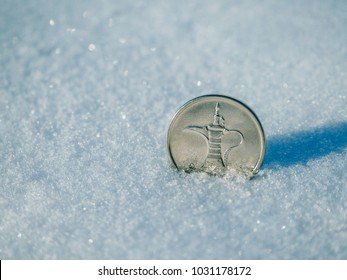 Coin 1 dirham in the snow.