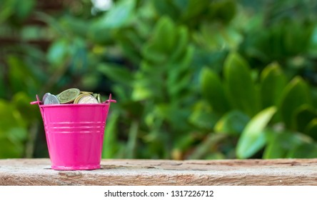 coin money on pink bucket,finance and tax concept.