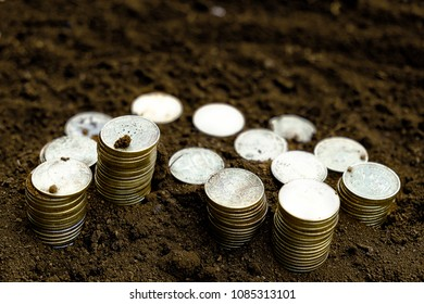 Coin on the ground and space for design. Money and business concept