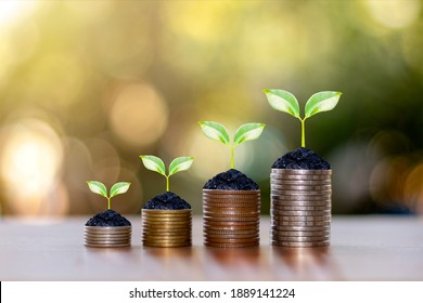 Coin and plant on coin pile ideas for saving money and investing in the business.