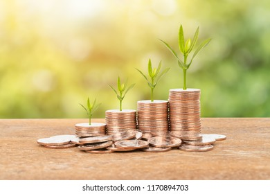 Coin stack with plant on green tree background