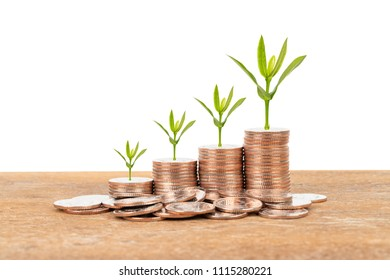 Coin stack with plant tree on white background