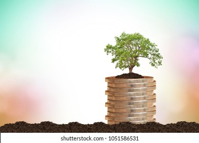 coin stack and small tree on blurred nature background.saving money or interest increasing concept