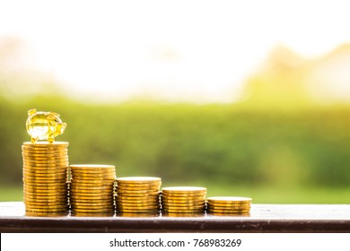 Coin staircase step to success with saving money in the gold piggy bank as destinations in the public park, To victory of business and investment for plan the future concept.