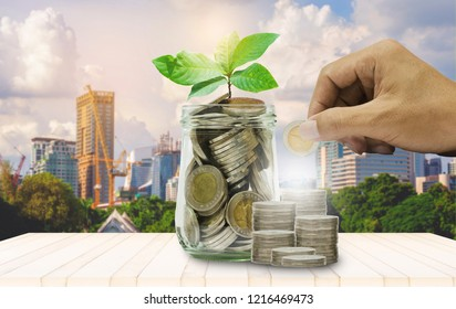 coin staking green plant growing with hand put coin in to jar with city building background. financial and saving money concept. budgeting property real estate  investment.