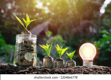 Coins in glass jar with young plant on top  and light bulb in soft nature background for saving,finance,business or energy concept.