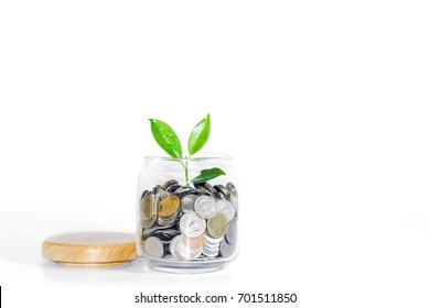 Coins in a glass jar with a young plant over white background, Concepts for business and finance.