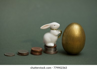coins gold egg and white rabbit, aconceptual  growing profits, income from investments, success, gain, wealth, pensions and savings