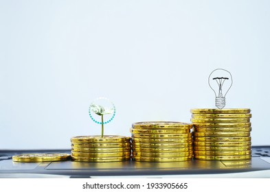Coins gold money growing plant for finance