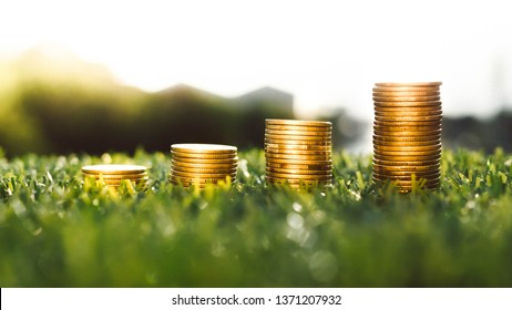 coins and money growing for finance and banking, saving money or interest increasing concept