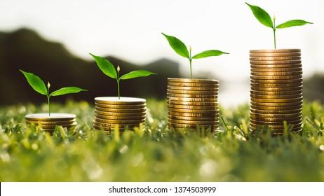 Monedas y plantas de producción de dinero para finanzas y banca, ahorro de dinero o aumento de intereses concepto