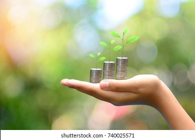 coins money growth up on hand to profit concept investment mutual fund finance and business