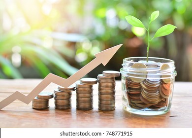 coins money saving setting growth up increase to interest for concept investment fund finance and business