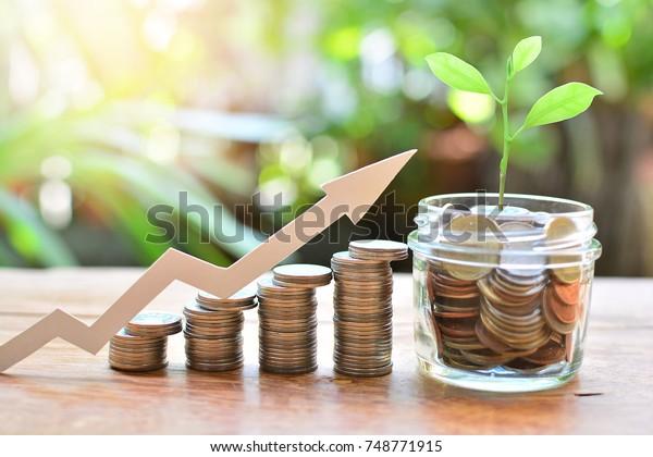 節省金錢,增長概念投資基金融業務利息