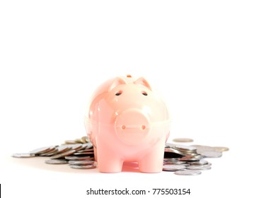Coins and Piggy bank