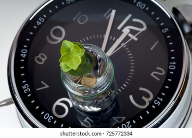 coins with plant and clock, isolated on white background. savings concept, concept of time and money. copy space for text.