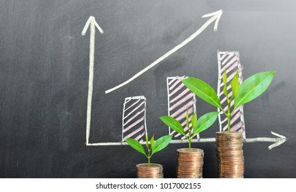 coins saving growth up increase to profit for concept investment mutual fund finance and business