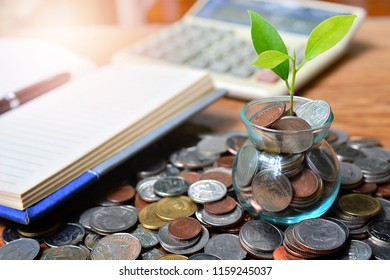 coins saving growth up to profit interest for concept investment mutual fund finance and pension retirement