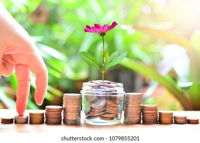 coins saving make step ladder increase to high interest profit for concept investment fund finance and business success