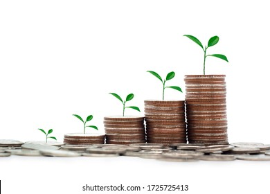 Coins stack with shadow to show growing money with tree, save, better life, financial investment and retire for the future isolated on white background.