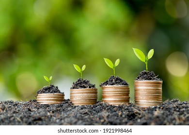 The coins are stacked on the ground and the seedlings are growing on top, the concept of saving money and financial and business growth.